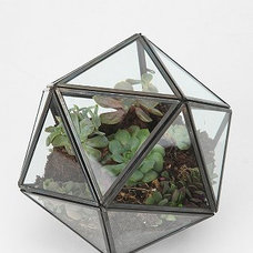 Contemporary Terrariums by Urban Outfitters