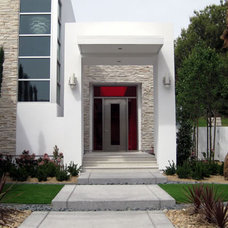 Contemporary Front Doors by Neoporte Modern Door