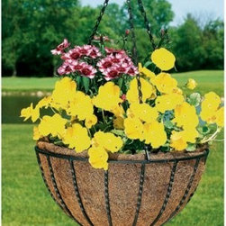 Black Round Coco Liner/Mild Steel Canterbury Hanging Basket Planter - The Canterbury Hanging Basket Planter is perfect for showing off seasonal foliage while beautifully accenting decks patios porches and gardens. This durably constructed hanging basket has a 3-piece chain for easy height adjustments and is made to withstand outdoor elements. The Canterbury Hanging Basket Planter comes with an eco-friendly coco liner made of natural fibers which have been proven to evenly support soil and create insulation so roots remain cool even in the hot sun. Once the growing season has ended coco liners can be placed in compost boxes for a natural return to nature.About Woodstream and CobraCoA privately held company with a long-standing positive reputation Woodstream is a global manufacturer and marketer of quality products from pets and wildlife control and home and garden products to bird feeders and garden decor. They have a 150-year history of excellence growth and innovation and have built a strong presence in key markets through organic growth and strategic acquisitions. Most recently Woodstream acquired CobraCo which offers an extensive line of planters baskets flower boxes and accessories. The growth of Woodstream is thanks to their customer-driven approach to product development a dedicated design organization that focuses on innovation quality and safety as well as a commitment to an industry-leading level of service.
