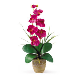 Nearly Natural - Single Stem Phalaenopsis Silk Orchid Arrangement - Bursting with color and personality the Phalaenopsis is perhaps the most popular variety of all the orchids. Six lively blooms and two buds are complimented by genuine bamboo, which enhances the silk plant's authenticity. Featuring nearly natural leaves, moss and roots, this familiar favorite is sure to charm the masses. Color: Beauty, Height: 21', Vase: H 4-1/4' W 5-1/4'