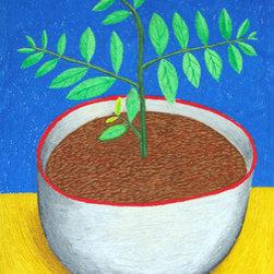 Sapling (Original) by Daniel Calderon - Sapling in a clay pot