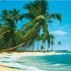 Sudsee Wall Mural - Palm trees sway towards beautiful blue waters on a perfect beach day in this beautiful wall mural.