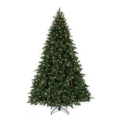 Austrian Spruce Christmas Tree - EUROPEAN EVERGREEN BEAUTY IN TREE CLASSICS' AUSTRIAN SPRUCE CHRISTMAS TREE