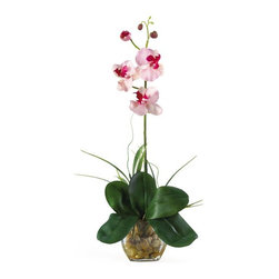Mini Phalaenopsis Liquid Illusion Silk Orchid Arrangement - What a find! Expertly designed, our 20 inches Mini Phalaenopsis Liquid Illusion silk arrangement will be a treasured possession for years. It highlights a stem of full-blooming silk Phalaenopsis orchids and buds, foliage, and roots, with grass accents. This exquisite silk plant is presented in a glass vase with river rocks and artificial water. Height= 20 in x Width= 11 in x Depth= 8 in