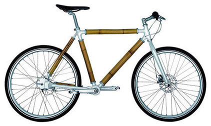 Eclectic  by Bike-Trend