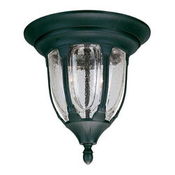 Joshua Marshal - Two Light Clear Seeded Glass Textured Black Outdoor Flush Mount - Two Light Clear Seeded Glass Textured Black Outdoor Flush Mount