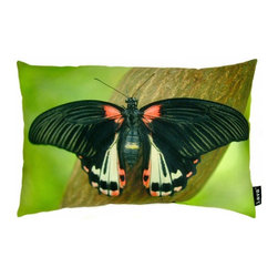 Lava - Butterfly On Branch 12 x 19 Pillow (Indoor/Outdoor) - 100% polyester cover and fill. Suitable for use indoors or out. Made in USA. Spot clean only