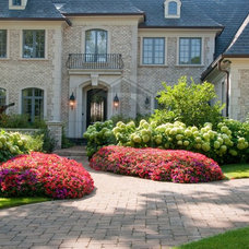 Traditional Plants by Premier Service