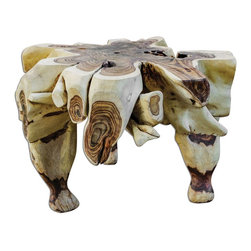 Uttermost - Uttermost Sono Root Table 25594 - Stunning display of nature's beauty in the natural colors, burls and formations of these reclaimed tree roots.