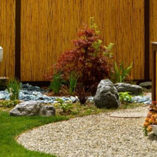 Landscape Ideas