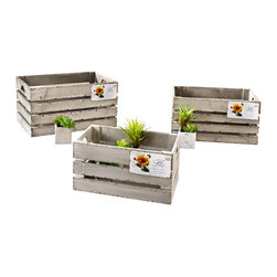 "Pier Surplus - Decorative Wooden Crate ""Postcard"" -- Set of 3  #HD221636 - Set of three wood crates in bright shades of gray with sympathetic signs of use, antique-style."