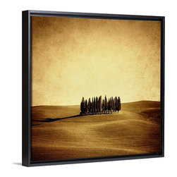 Vintage Photo of Italian Cypresses Wall Art at Great BIG Canvas - Vintage Photo of Italian Cypresses Wall Art.  Available at www.GreatBigCanvas.com as a stretched canvas, framed print, print, or wall peel, in various sizes.