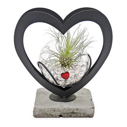 "luludi living frames - Luludi Living Frames Duet - A heartfelt living gift, our duet terrarium features a glass bowl suspended between two hearts welded together on top of a stone base. Each clear marble filled bowl is topped with an easy care air plant and a red heart., available as shown or may be custom-tailored., dimensions: 6. 5"" wide x 6"" height x 6"" depth, weight (approx): 1. 4 lbs, terrariums are unique landscapes so finished pieces may vary., suggestion for care:, no direct sun required., mist air plant once per week remove plant first, mist and allow to dry before replacing in terrarium., upon receipt soak air plant in bowl of water for 30 minutes, allow to dry then place plant in terrarium"