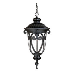 "Acclaim Lighting - Acclaim Lighting 2116 Naples 1 Light 20.5"" Height Outdoor Pendant - Acclaim Lighting 2116 Naples One Light 20.5"" Height Outdoor PendantGraceful metal work and decorative embossing highlight this exterior pendant from the Naples Collection.Acclaim Lighting 2116 Features:"
