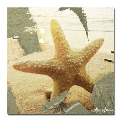 Ready2HangArt - Ready2HangArt Alexis Bueno 'Star Struck' Canvas Wall Art - This tropical abstract canvas art is the perfect addition to any contemporary space. It is fully finished, arriving ready to hang on the wall of your choice.