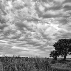 """""""The Right Tree"""" Artwork - I took this photograph on a cloudy day in the Florida Everglades. The landscape was converted to black and white to emphasize the dramatic effect the clouds had on the tree in the foreground.    This image is available as a  20x30 Printed on Metallic and Mounted on Plexiglass -$1100   All images are available in the following sizes: 13x19 unframed on Luster photographic paper -  17x25 unframed on Luster photographic paper -  20x30 Printed on Metallic and Mounted on Plexiglass -$1100  Limited to 9 Artist Proof editions in a particular size. They will be signed and numbered on the back of the image.  I print all images using the latest technology, the highest-quality papers, and newest archival inks. Additionally, I include a 5mm white border to ensure proper handling that eliminates the potential for fingerprints."""