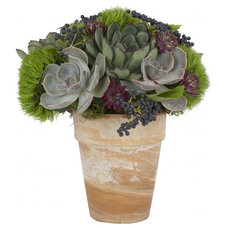 Contemporary Indoor Pots And Planters by Jayson Home