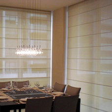 Contemporary Roman Blinds by CCB DESIGN INC