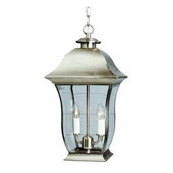 Trans Globe Lighting - Trans Globe Lighting 4975 BN Outdoor Hanging Light In Brushed Nickel - Part Number: 4975 BN