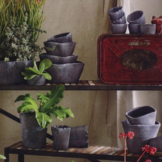 Contemporary Indoor Pots And Planters by Spruce Eco-Studio