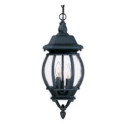 Acclaim Lighting - Acclaim Lighting 5160BK/SD Acclaim Lighting 5160BW Burled Walnut / Clear Beveled - This gorgeous outdoor pendant from the Chateau Collection will be an elegant addition to the exterior of your home.