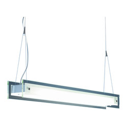 Contempra 2-Light Pendant