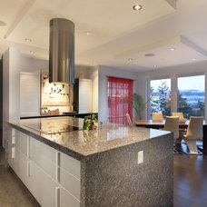Contemporary Kitchen Cabinetry by Pedini Calgary