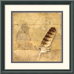 Amanti Art - Owl Feather Framed Print by Susan Friedman - Susan Friedman's beautifully enhanced photographic prints have a nostalgic, magical feel to them. Contrasting delicate forms, Friedman invites viewers to explore the world of as never before.