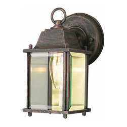 Trans Globe Lighting - Trans Globe Lighting 40455 Single Light Energy Efficient Outdoor Wall Sconce - Features: