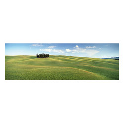 Tuscany Wall Mural - The Tuscan countryside is an idyllic and pristine region of Italy. This Italian mural romances the rolling green hills of this famous wine region with a panoramic view.