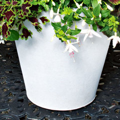 contemporary outdoor planters by White Flower Farm