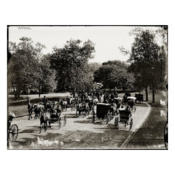 Carriage Ride in The Park Print - Active day in the park with horse and carriage. I believe this is in New York City around 1900. Photograph by the Detroit Photographic Company in 8x10 glass plate negative.