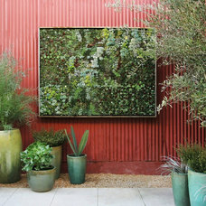 Contemporary Outdoor Planters by Flora Grubb Gardens