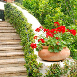 Carla Melson Ojai Residence - A terracotta planter at the base of this outdoor staircase.
