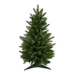"Vickerman - Frasier Fir Dura-Lit 50CL 90T (24"" x 16"") - 24"" x 16"" Frasier Fir Tree 50 Clear Dura-Lit Lights, 90 PVC tips. Dura-lit Lights utilize microchips in each socket so bulbs stay lit even when some bulbs are broken or missing."