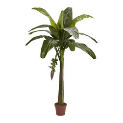 Nearly Natural - 6 ft. Banana Silk Tree - Real Touch - Numerous large vibrantly green leaves. Includes tiny sprouting green bananas. Perfect for those wanting something different. Construction Material: Polyester material, Iron wire, Plastic. 48 in. W x 4 ft in. D x 72 in. H ( 16 lbs. ). Pot Size: 8 in. W x 7 in.HBreak out the beach towel and dream of your own balmy tropical paradise under your very own 6 foot tall Banana Tree. Realistically-designed sturdy double trunks hold numerous large leafy vibrant green leaves up high. As a finishing touch, tiny sprouting green bananas are included to complete the illusion. Standing in a decorative pot, this tree is perfect for those wanting something just a bit different.