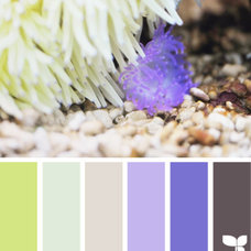Design Seeds® | for all who ❤ color | color sea