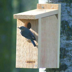 Songbird Essentials - Bluebird House View Thru - Clear Plastic window prevents disturbing the nest while viewing. Window easily lifts out for cleaning. Inside predator guard. Ventilation and drainage holes. 1 1/2 inch entrance hole.