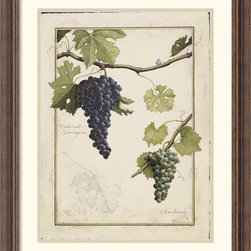 Amanti Art - Cabernet Sauvignon Framed Print by Meg Page - Referred to as the 'King of Red Wine Grapes', Cabernet Sauvignon has the privilege of being the worlds most sought after red wine. Perfect for your kitchen or dinning room, these print will delight you visually while you enjoy a glass.