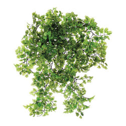 Silk Plants Direct - Silk Plants Direct Maidenhair Fern Hanging Bush (Pack of 6) - Silk Plants Direct specializes in manufacturing, design and supply of the most life-like, premium quality artificial plants, trees, flowers, arrangements, topiaries and containers for home, office and commercial use. Our Maidenhair Fern Hanging Bush includes the following: