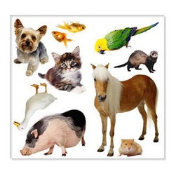 Biggies, Incorporated - Wall Stickies - Pets - Wall Stickies - Pets.