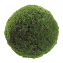 Silk Plants Direct - Silk Plants Direct Moss Ball (Pack of 12) - Pack of 12. Silk Plants Direct specializes in manufacturing, design and supply of the most life-like, premium quality artificial plants, trees, flowers, arrangements, topiaries and containers for home, office and commercial use. Our Moss Ball includes the following: