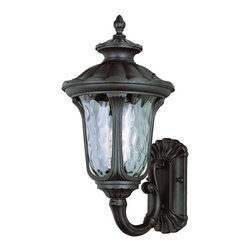 Trans Globe Lighting - Trans Globe Lighting New American Transitional Outdoor Wall Sconce - From the New American Collection, this Trans Globe Lighting outdoor wall sconce features a plethora of elegant details that will compliment a variety of architectural styles. It comes in a rich Rust finish that pairs beautifully with the clear water glass shade.