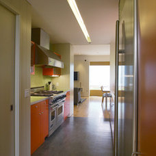 Modern Kitchen Shine - kitchen