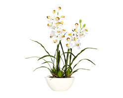 Nearly Natural - Cymbidium w/White Vase Silk Flower Arrangement - Let's talk springtime, shall we? Well, that'll be the feeling whenever you gaze upon this warm, inviting Cymbidium w/ white vase silk flower arrangement. With an array of soft blooms, set amidst the wispy stems, you'll be thinking springtime freshness no matter what season it is. Comes complete with a white vase that perfectly accentuates the floral beauty.
