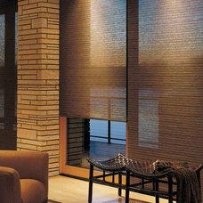 Modern Roman Shades by Accent Window Fashions LLC