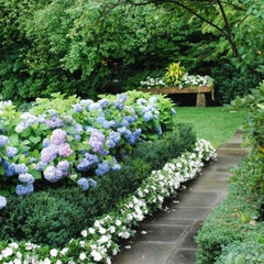 Front Planting Redo Project / green white &amp; hydrangeas