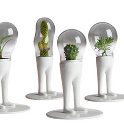 Domsai Terrariums - Why? Because they are bizarre, and in my opinion, hilarious. These terrariums will keep your desk from being a snore, and distract pesky people who come in to bug you about something.
