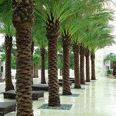 Modern  by Lenkin Design Inc: Landscape and Garden Design