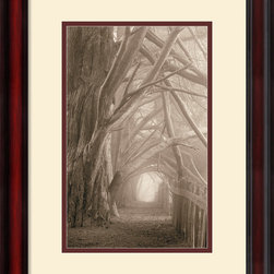 Amanti Art - Enchanted Path Framed Print by Paul Kozal - There's nothing quite so irresistible as a wooden path leading you into the forest, as this nature photography print so beautifully captures. This image makes an excellent choice for anyone who loves the great outdoors -- and an amble through the woods.